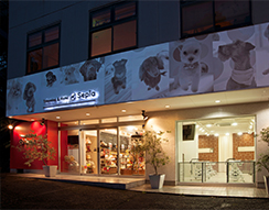 Trimminng&Hotel Sepia 調布店